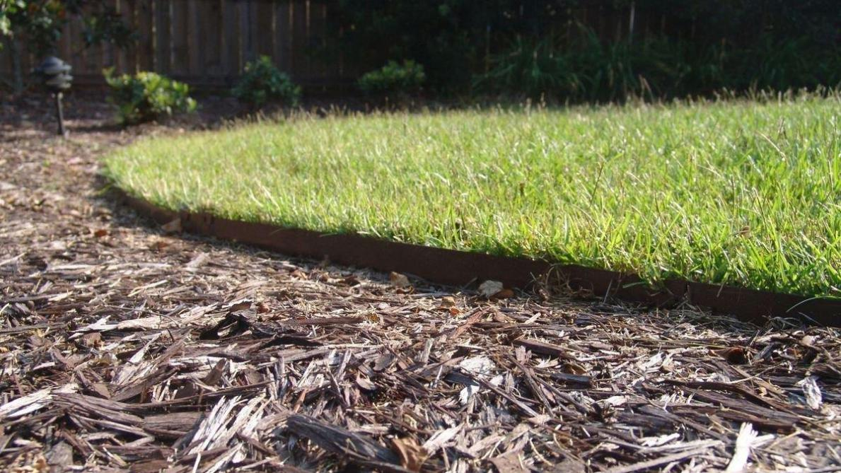 Favoriete Mulchen: bodembedekking houdt de grond gezond - Landbouwleven DU27