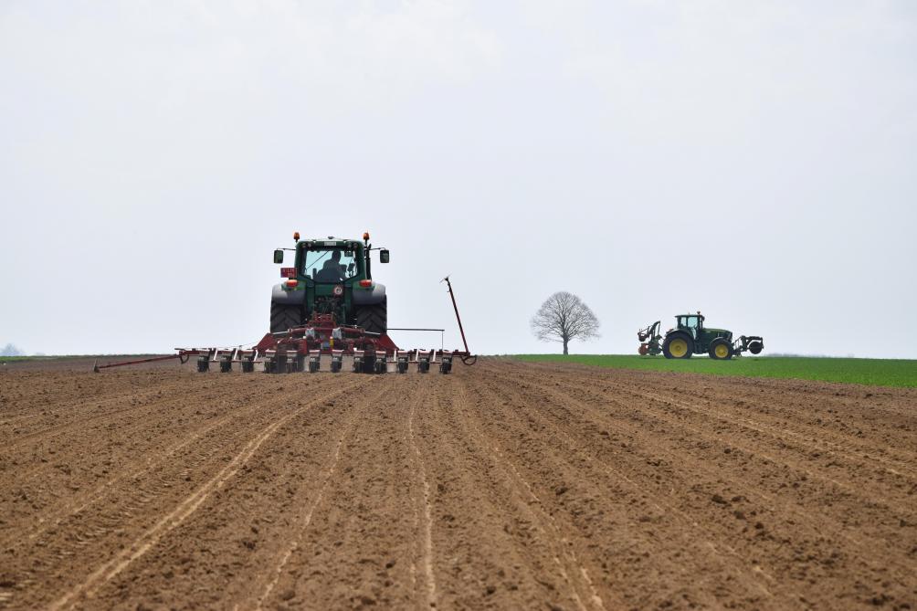 Vlaamse pachtprijs maakt in 2018 pas op de plaats - Landbouwleven