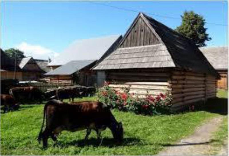 Polen en slowakije landbouwleven - Meer mooie houten huizen ...